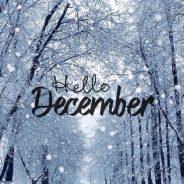 Свежий декабрьский выпуск N`ecole Times!!!